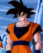 Goku Película 13