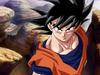 Goku(Kai)