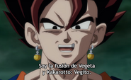 Vegetto DBS66