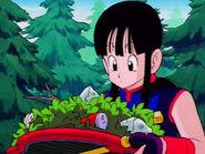 EP151DB La Princesa Chi-Chi consigue el Bansho