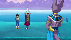 Beerus Whis is train