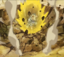 God of Destruction Beerus Saga