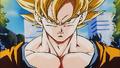 GokuS18