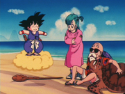 Goku bulma e Genio