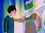 L'ultimo saluto di Piccolo