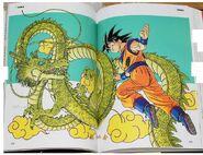 Choogashuu pg172