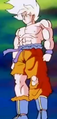 Mighty Blast of Rage - Goku 2