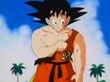 Goku.Ep.144.DB