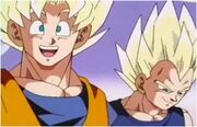 Goku and Vegeta2