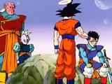 Dragon Ball Z épisode 249