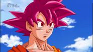 Goku SSJD Cap 9 DBS