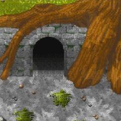 L'ingresso della fortezza dei Ninja.