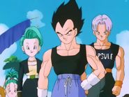Familia Brief fin DBZ