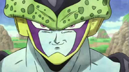 Broly - Perfect Cell