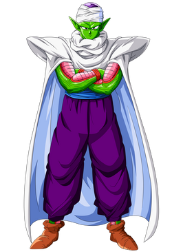 Piccolo Trans