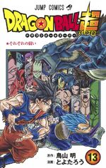 Volume 13 (Super) Cover