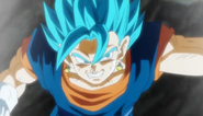 Vegetto Blue Punch