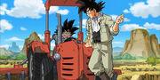 Goku e Goten nei campi