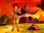 Goku fantasma