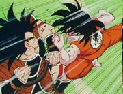 Raditz vs Goku