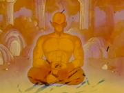 Ten Shin Han meditant