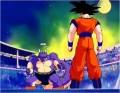 Goku vs maraikoh
