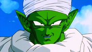 Piccolo10YearsLater