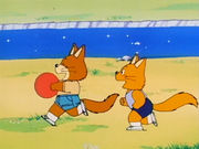 FoxBall