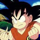 Son Goku Ichi Budokai 22