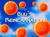 Buu's Reincarnation