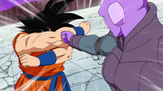 Goku defesa 19-44