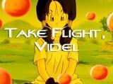Take Flight, Videl
