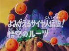 La storia dei Sayan Title-Card JP