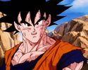 Goku202