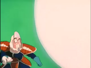 Possible Cranberry on Namek vs Namekian (1)