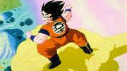 Arriva Goku
