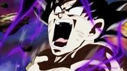 Goku ultra instinct end