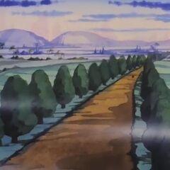 Paesaggi di Training Island.