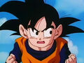 Dbz248(for dbzf.ten.lt) 20120503-18145750