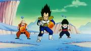 Crilin, Vegeta e Gohan contro la Squadra Ginew