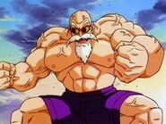 Maestro roshi max power