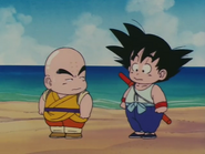Episodio 14 (Dragon Ball)