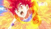 Goku Super Saiyajin Dios (2)