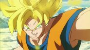 Son Goku SS DBS-Broly