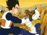 Vegeta Vs Litts