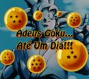 Adeus Goku... Até Um Dia!!!