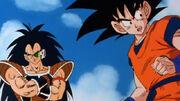 Goku e Radish