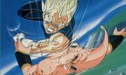 Vegetapic10