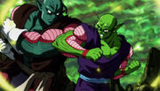 Piccolo vs Pirina