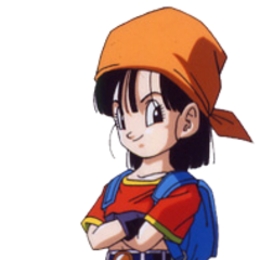 Pan in Dragon Ball GT.